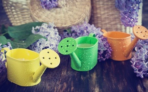Picture water, drops, flowers, Board, candles, lilac, bunches, basket, heads