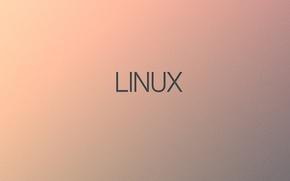 Picture minimalism, Linux, Linux