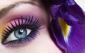 Picture flower, eyes, blue