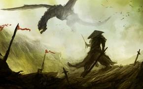 Picture fiction, dragon, art, samurai, dragon, banner, samurai, battlefield