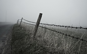 Picture road, landscape, fog, the fence, morning