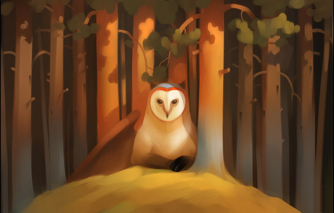 Photo wallpaper forest, look, trees, owl, bird, wing