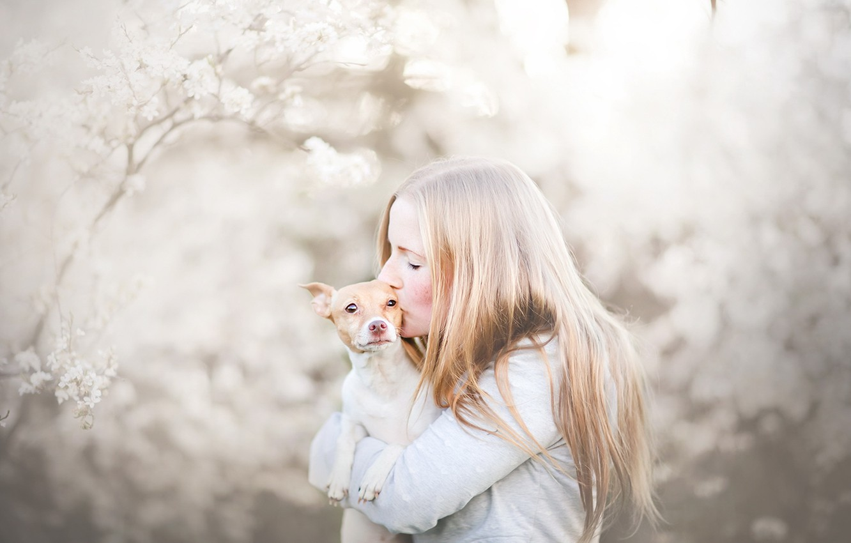 Photo wallpaper girl, dog, friends
