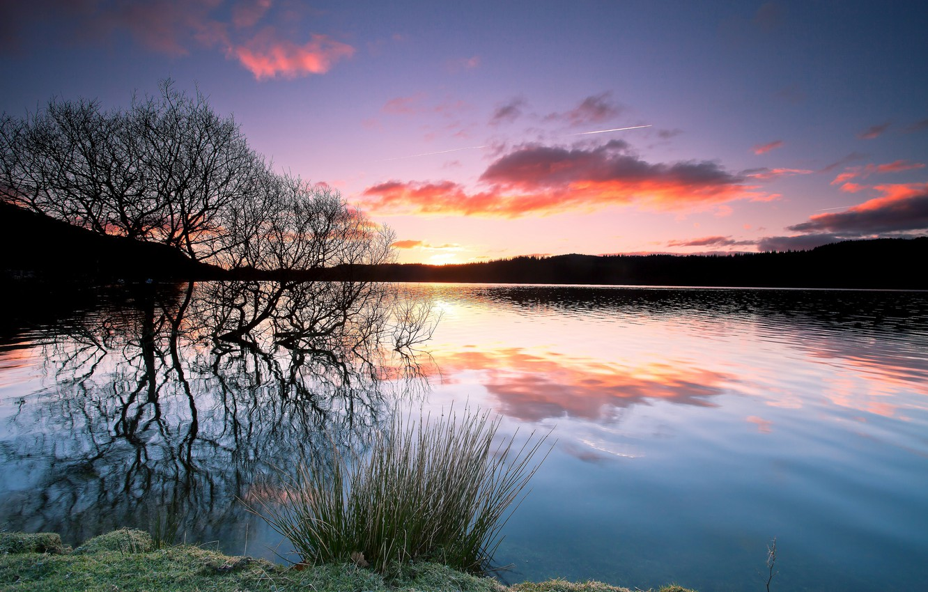 Photo wallpaper forest, sunset, lake, reflection, tree, the evening, silhouette, twilight