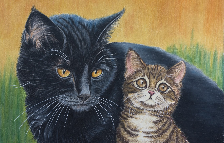 Photo wallpaper cat, nature, black, kitty, brown