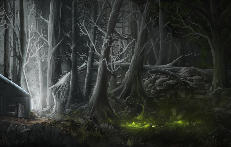 Photo wallpaper forest, light, night, house, figure, swamp