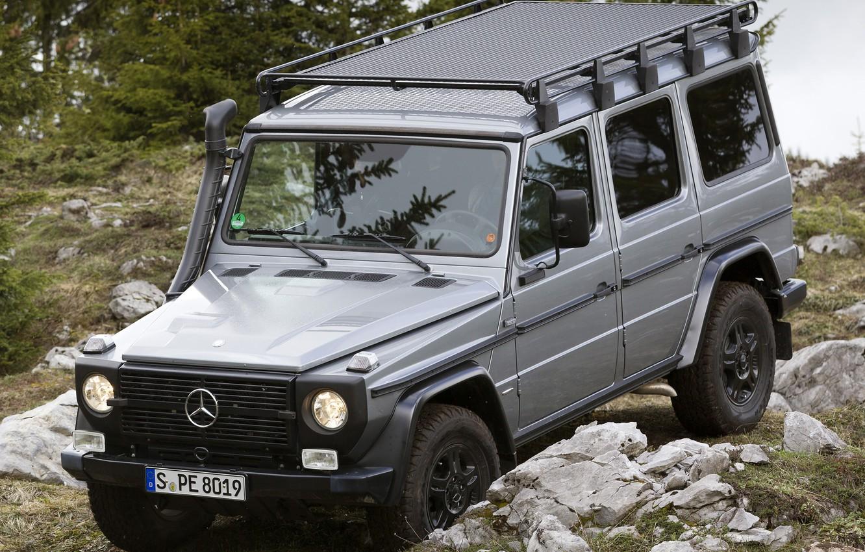 Photo wallpaper Mercedes-Benz, Grass, Germany, Mercedes, Stones, Wallpaper, Jeep, SUV, CDI, Джи300, G300, Professional, Benz