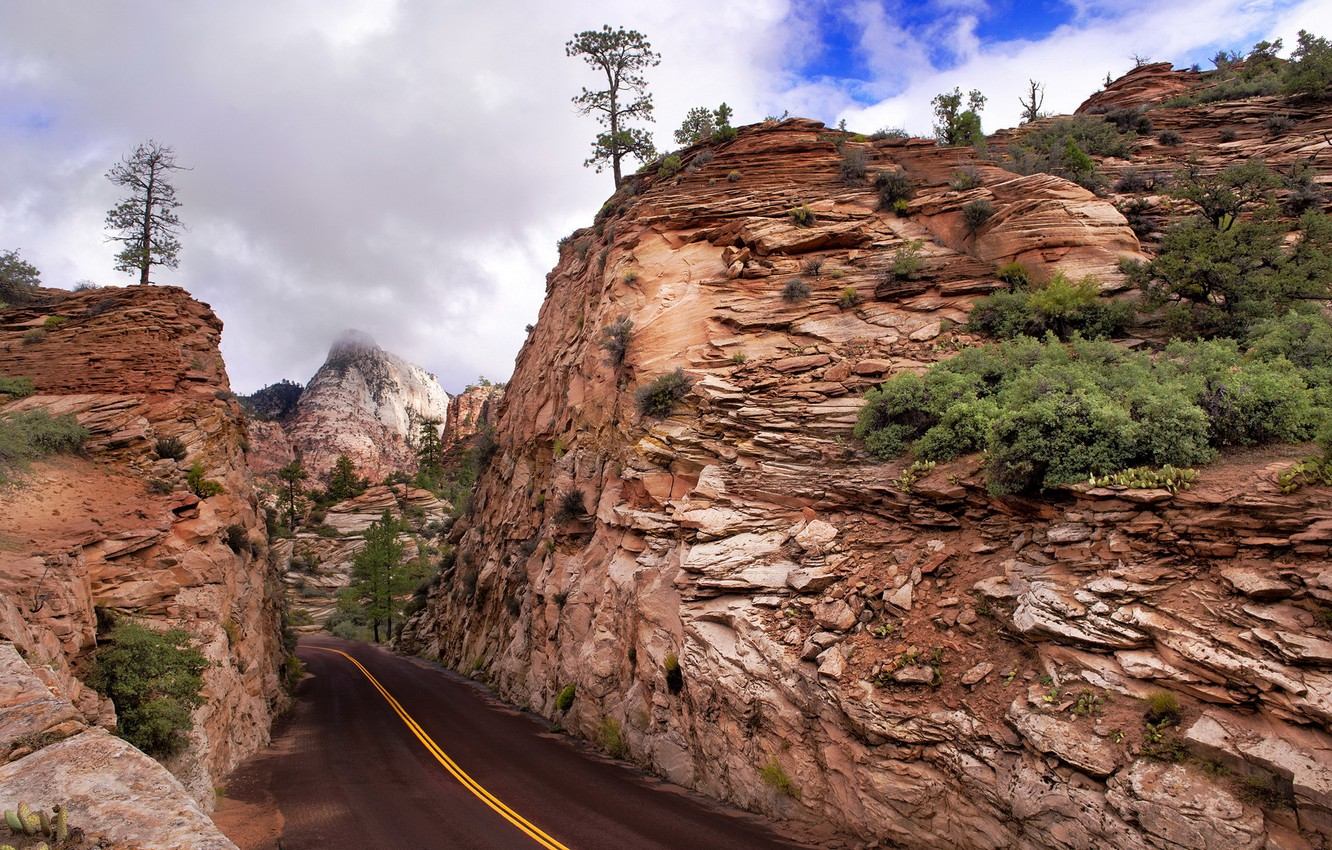 Photo wallpaper road, mountains, Zion National Park