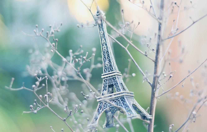 Photo wallpaper branches, Eiffel tower, paris