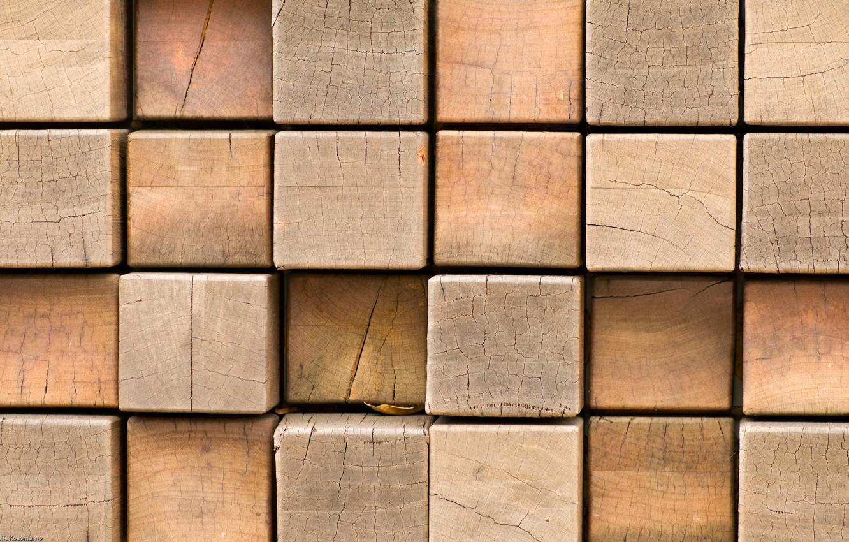 Photo wallpaper macro, tree, squares