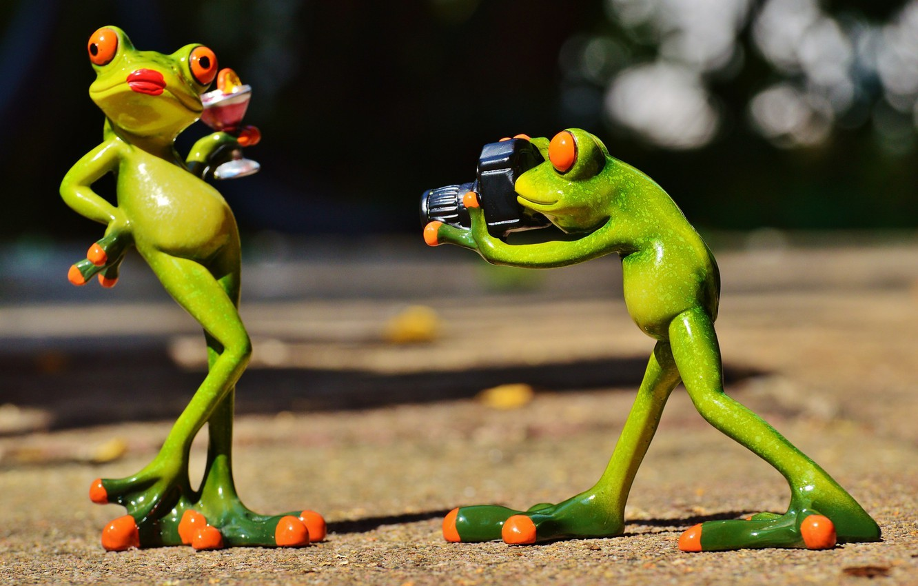 Photo wallpaper model, toys, frog, camera, frogs, photographer, figures, frog, posing, the, photo model, lady