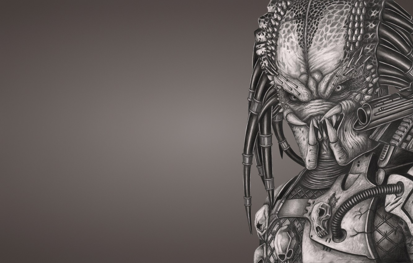 Photo wallpaper weapons, monster, predator, alien, alien, predator