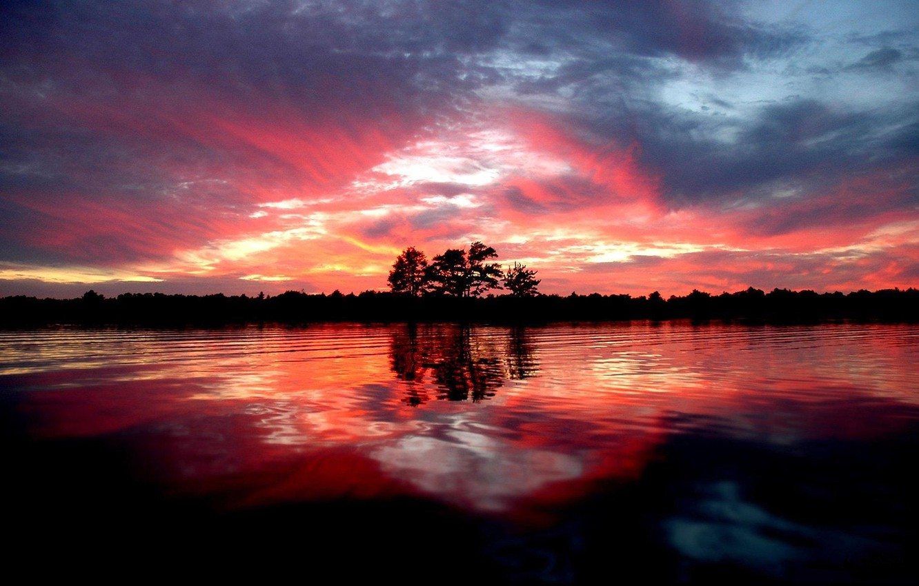 Photo wallpaper forest, trees, landscape, sunset, river, shore, the evening, pond