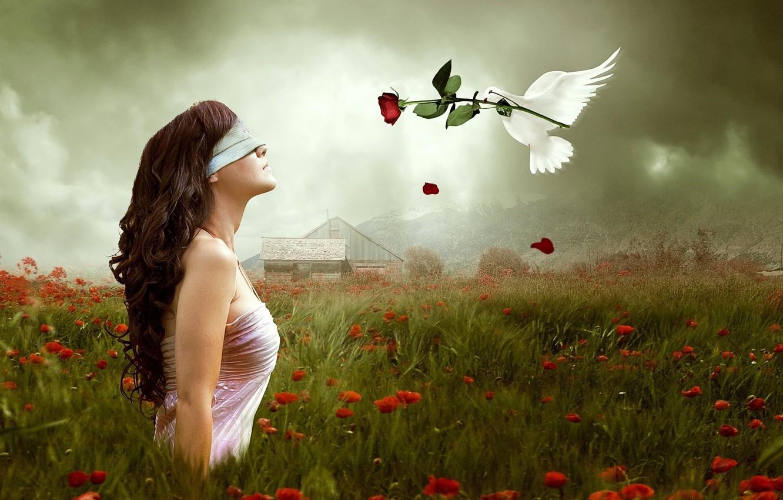 Photo wallpaper flower, nature, background, Wallpaper, mood, rose, dove, headband, girl. brunette