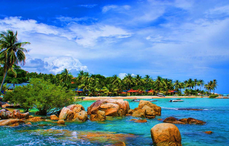 Photo wallpaper Nature, Beach, Exotic