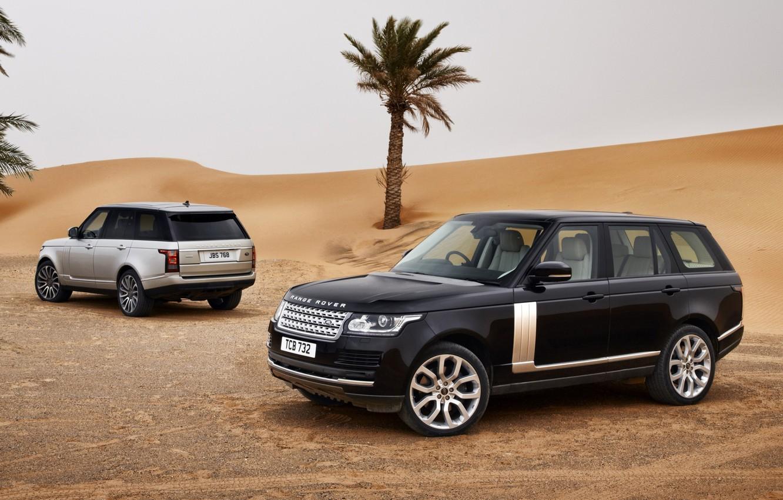 Photo wallpaper sand, the sky, palm trees, black, desert, silver, jeep, SUV, Land Rover, Range Rover, rear …