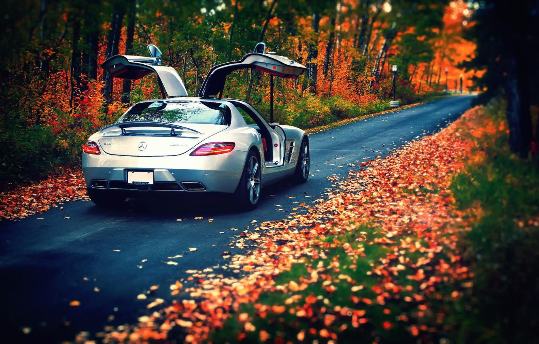 Photo wallpaper autumn, leaves, Mercedes-Benz, AMG, SLS, rear, silvery