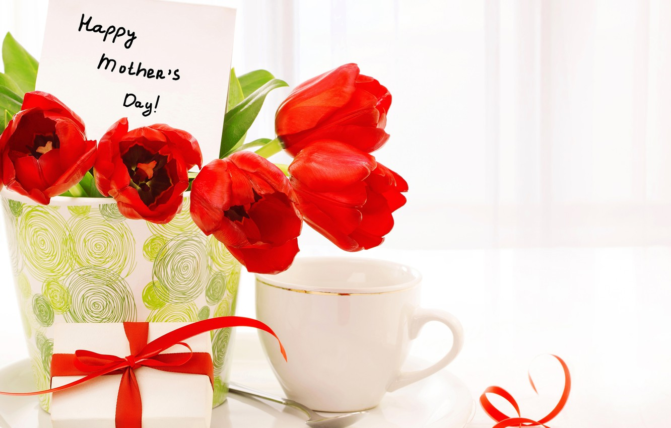 Photo wallpaper flowers, gift, Cup, tulips, red