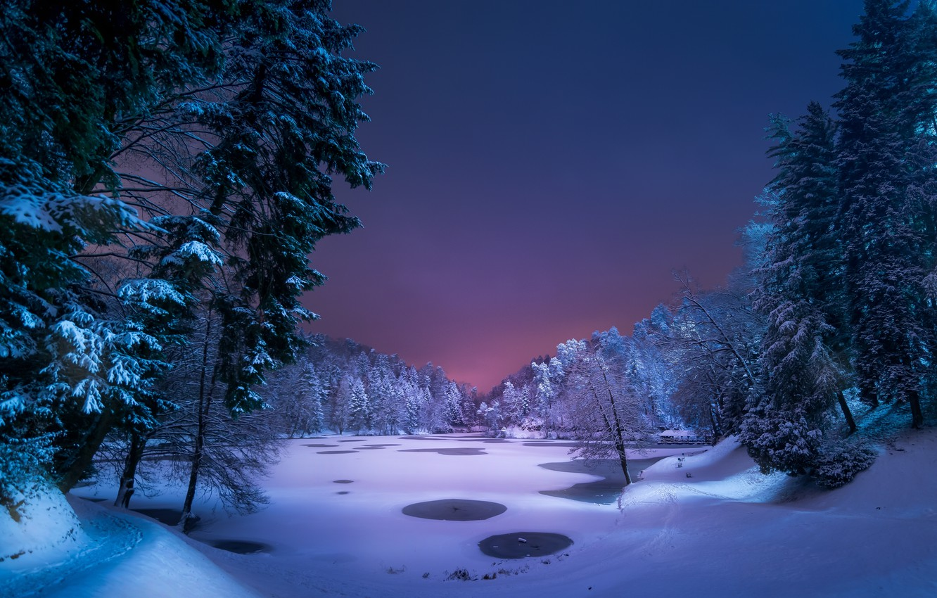 Wallpaper Winter Forest Snow Night Lake Images For
