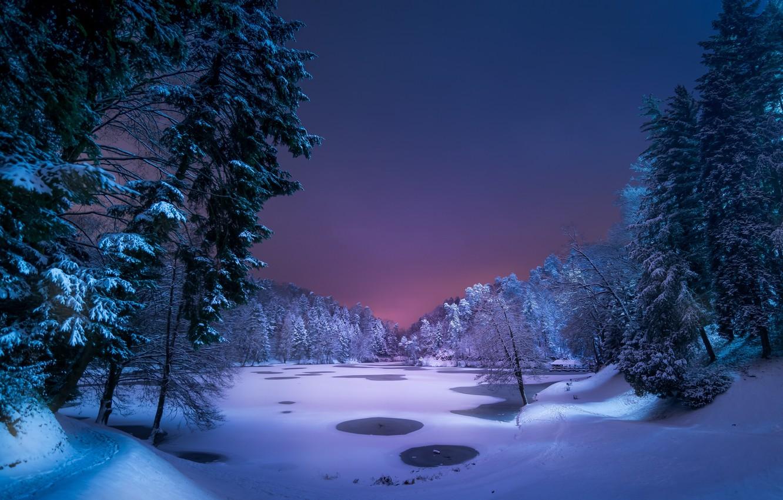 Photo wallpaper winter, forest, snow, night, lake