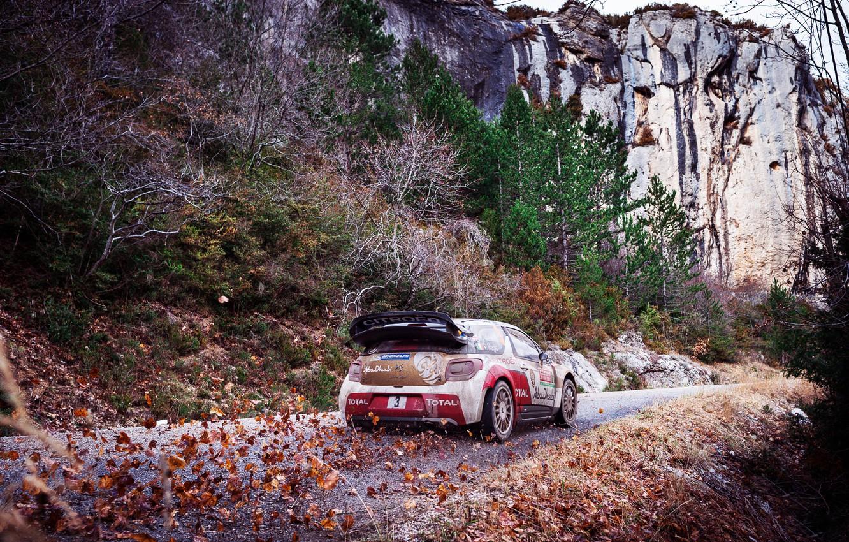 Photo wallpaper Mountains, Rocks, Leaves, Sport, Machine, Citroen, Citroen, DS3, WRC, Rally, Rally, Total