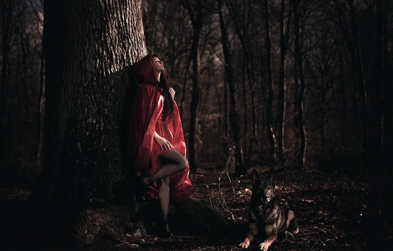 Photo wallpaper forest, girl, dog, cloak, Arya, Laurent KC
