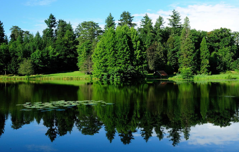 Photo wallpaper greens, water, trees, landscape, nature, lake, reflection, France, Burgundy