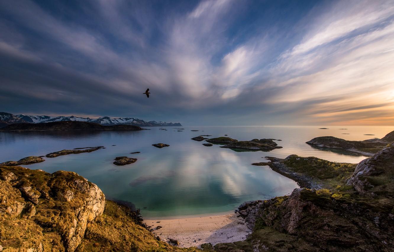 Photo wallpaper sand, sea, clouds, sunset, stones, bird, coast, horizon, Norway, in the sky, Sandvika