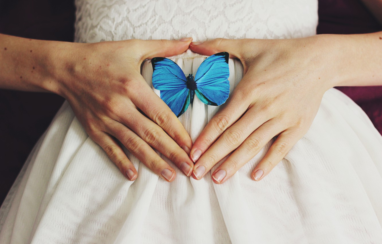 Photo wallpaper butterfly, wings, hands, blue
