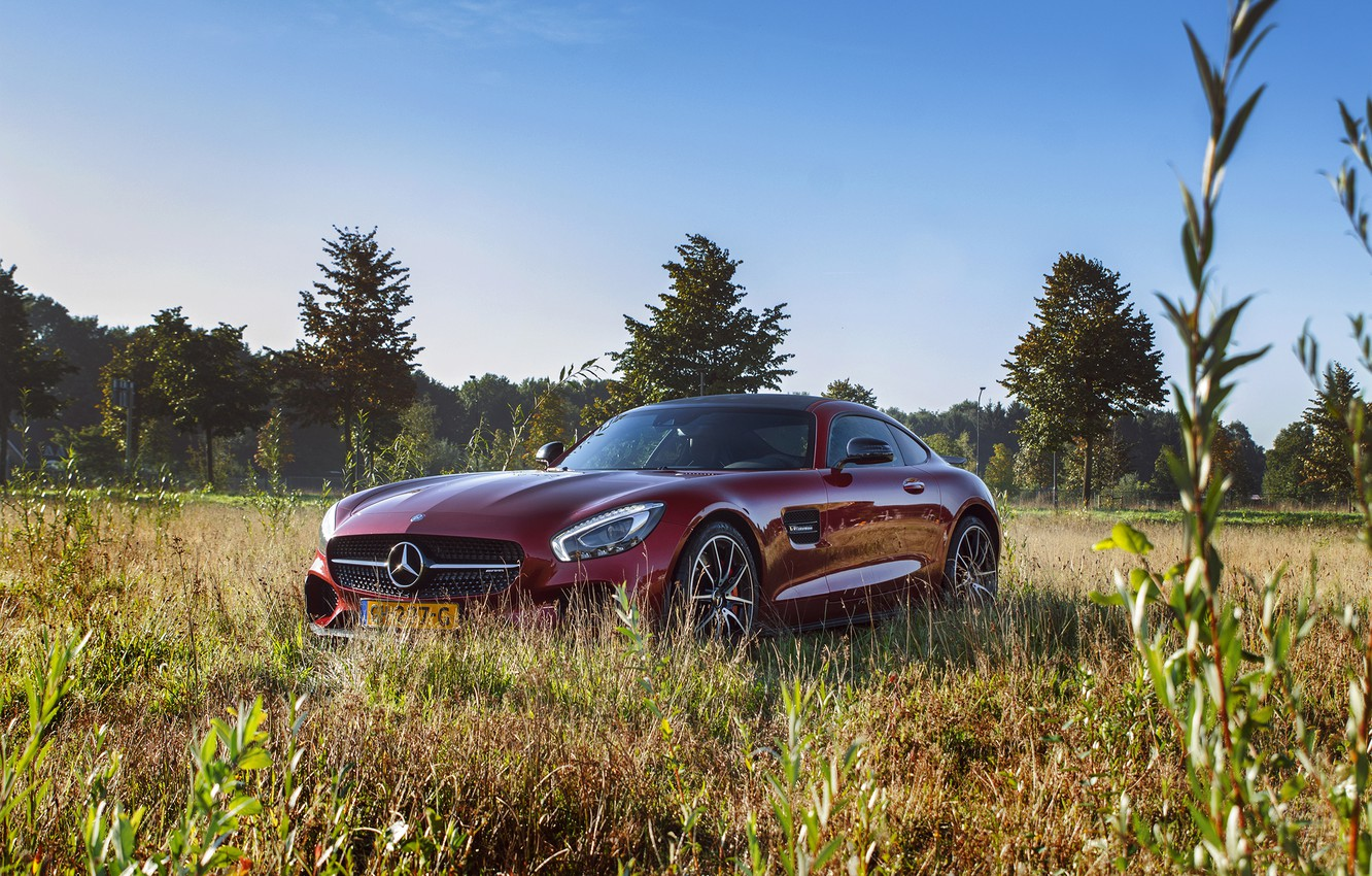 Photo wallpaper car, Mercedes, nature, AMG, GT S, Edition One