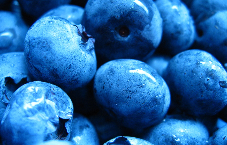 Photo wallpaper drops, blueberries, berry