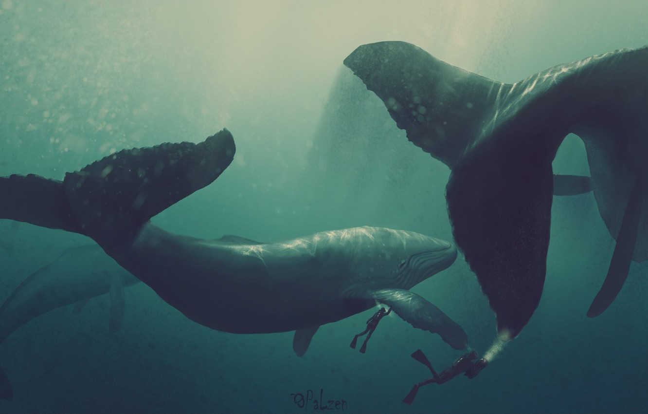 Photo wallpaper water, the ocean, the world, figure, graphics, diver, depth, author, kit, giant, tablet, whales, underwater, …