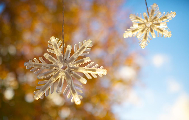 Photo wallpaper snowflakes, two, garland, bokeh