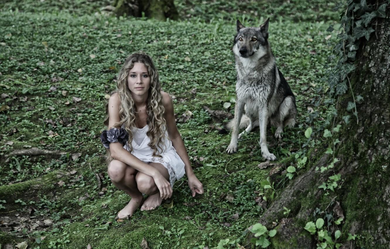 Photo wallpaper girl, background, wolf