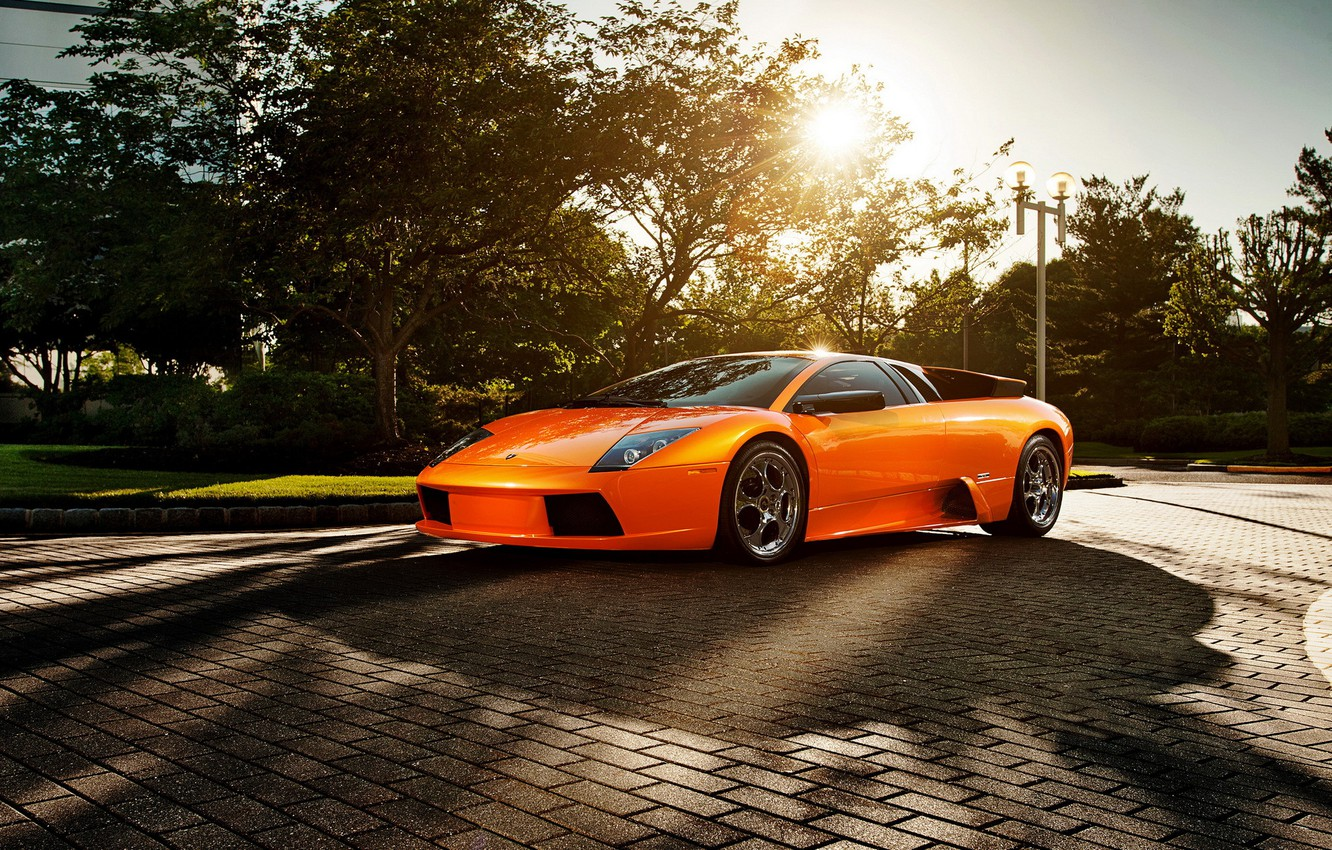 Photo wallpaper the sun, orange, supercar, Blik, Lamborghini Murcielago, Lamborghini