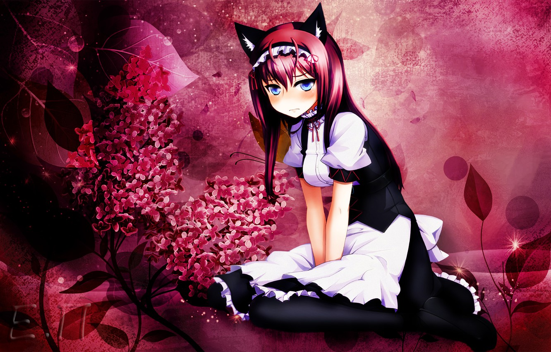 Photo wallpaper girl, anime, ears, the maid, Makise Kurisu, embarrassment, Steins Gate, Gates Stein