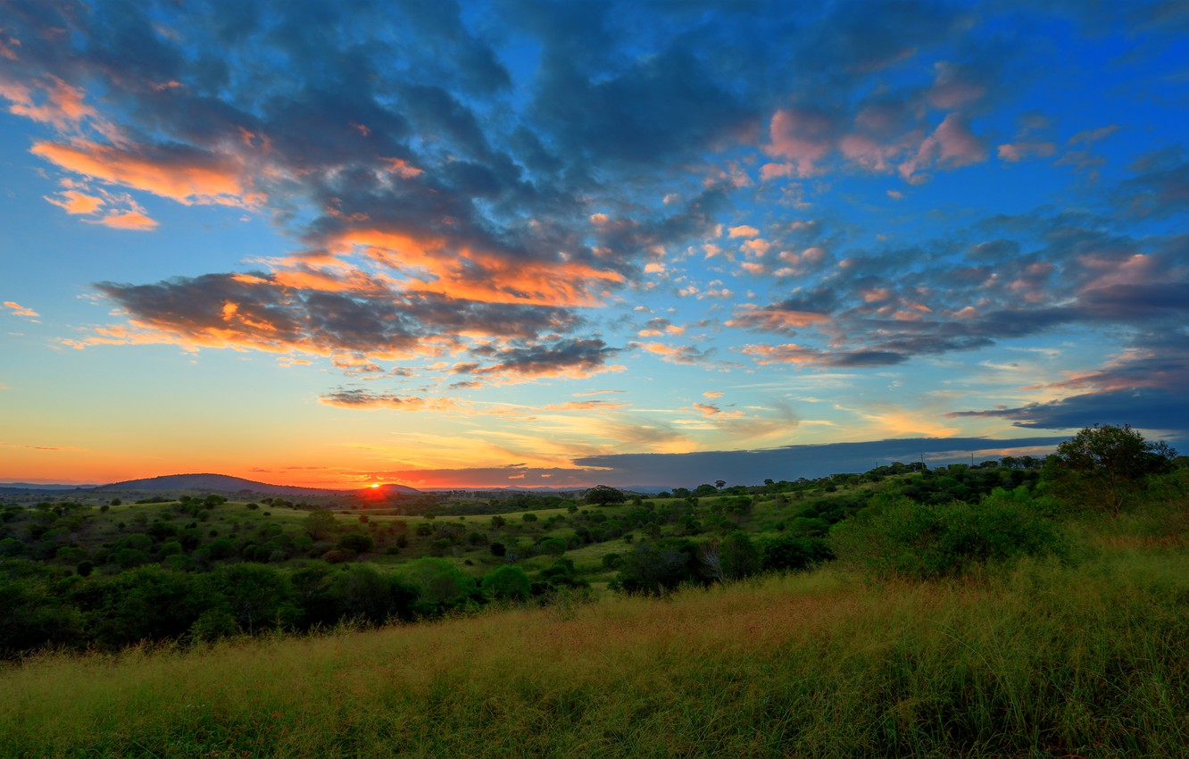 Photo wallpaper field, the sky, clouds, trees, sunset, hills