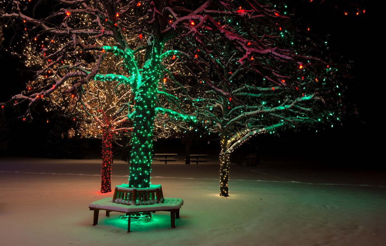 Photo wallpaper winter, snow, night, nature, lights, lights, Park, tree, bench, nature, night, park, winter, snow, tree, …