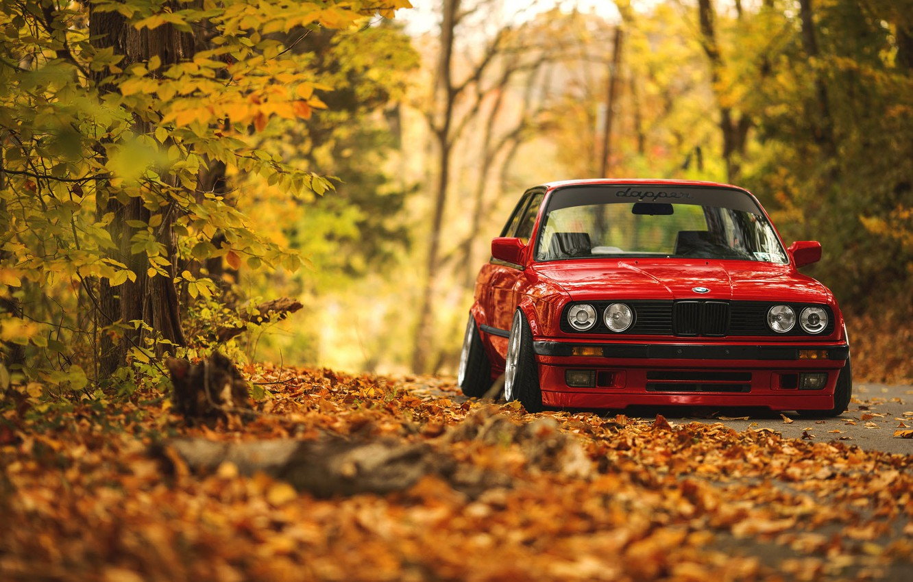 Photo wallpaper road, autumn, forest, leaves, BMW, E30