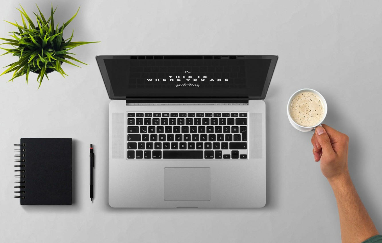 Photo wallpaper foam, table, plant, coffee, hand, handle, Cup, Notepad, laptop, the view from the top