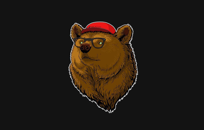 bear, glasses, cap, grey background