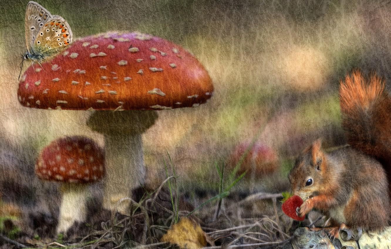Photo wallpaper autumn, forest, rendering, butterfly, mushrooms, treatment, texture, protein, berry, art, Amanita, Wallpaper from lolita777