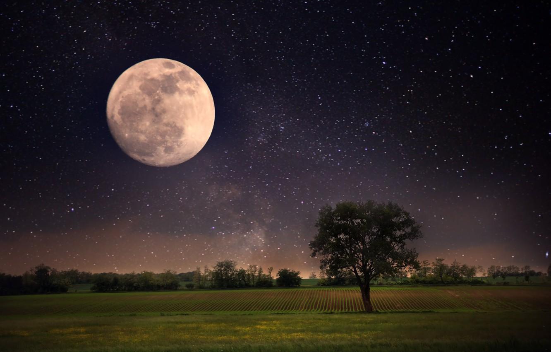 Photo wallpaper the sky, stars, landscape, night, nature, the moon, moon, sky, landscape, nature, night, stars, full …