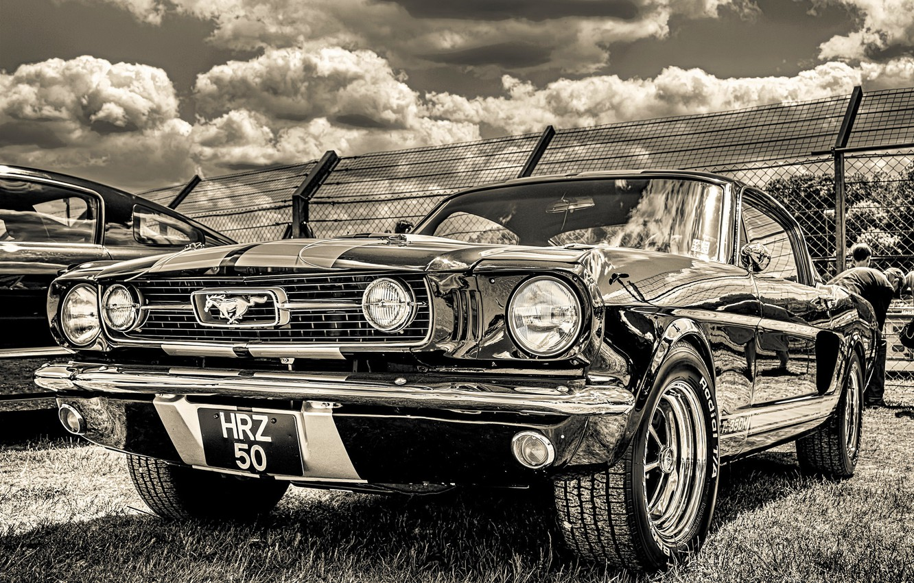 Photo wallpaper Ford Mustang, 1965, the front, GT350H