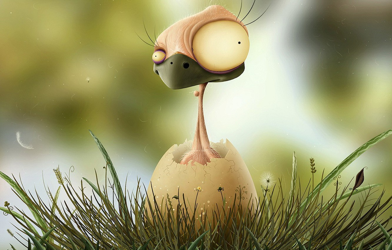 Photo wallpaper mood, Wallpaper, egg