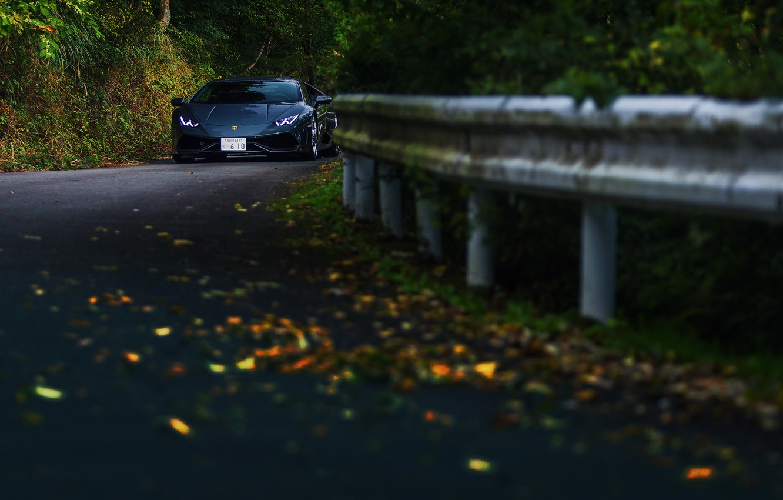 Photo wallpaper road, autumn, forest, Lamborghini Hurricane