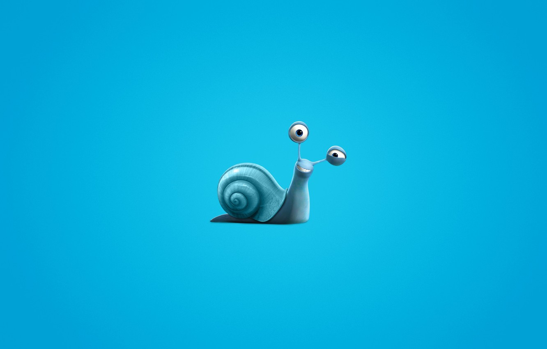 Photo wallpaper snail, minimalism, blue background, Turbo, Turbo, snail