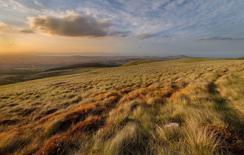 Photo wallpaper wave, field, grass, dawn, hills