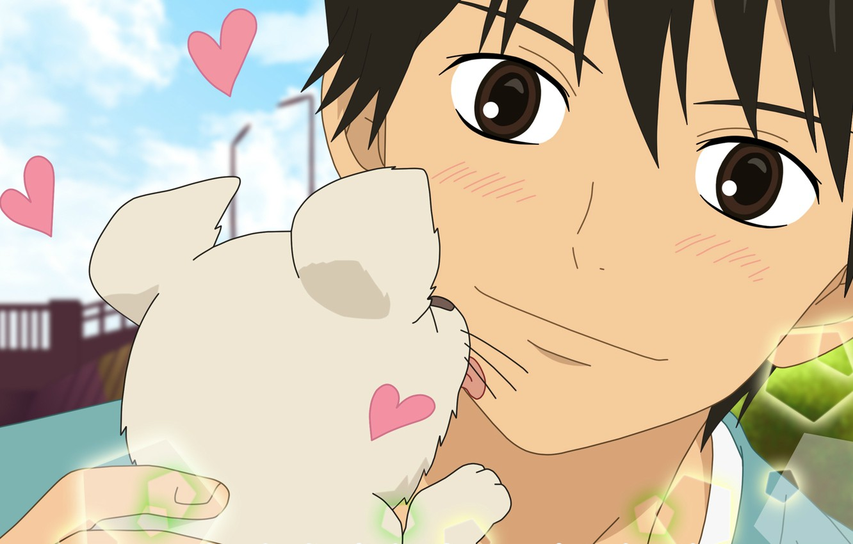 Photo wallpaper the sky, joy, face, hearts, puppy, guy, licks, Yago-san and Yamionpu, To get through to …