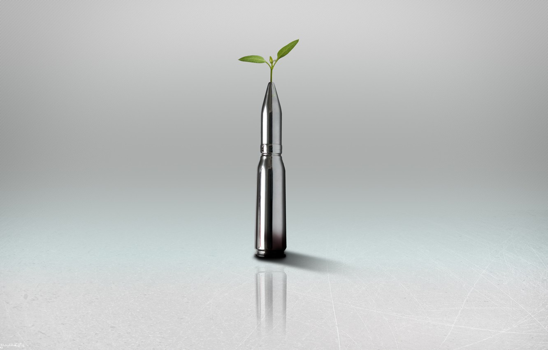 Photo wallpaper Minimalism, Plant, Bullet